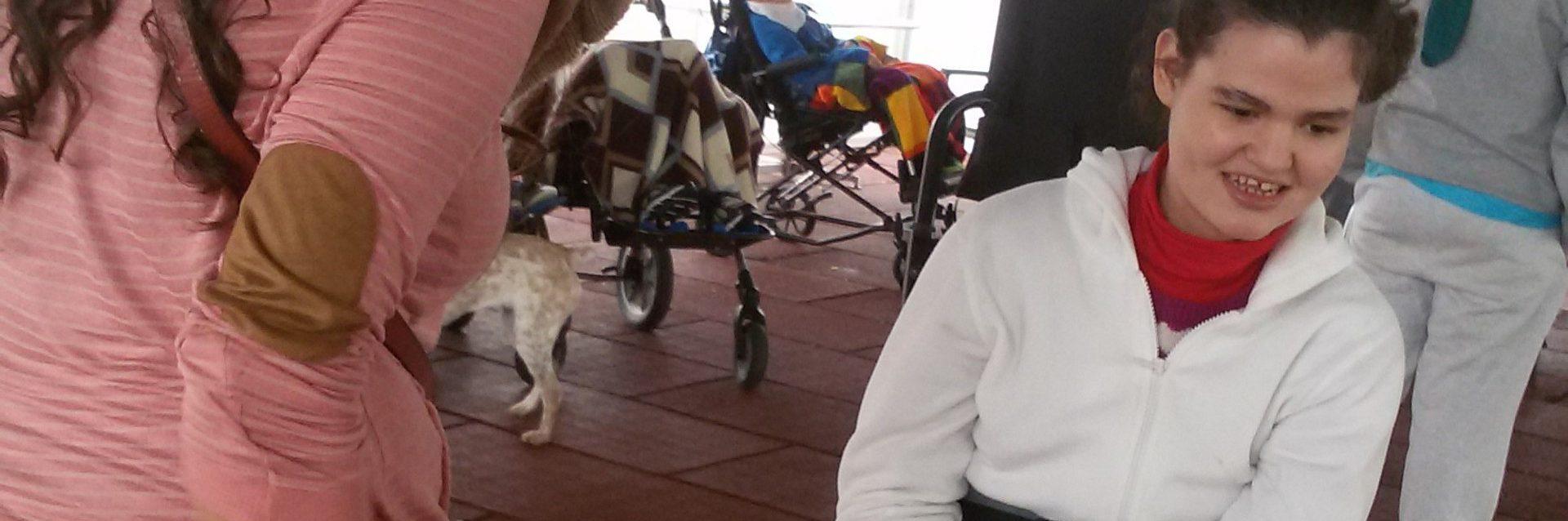 la-casita-carr-terapia-canina